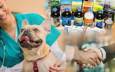 Veterinary Pcd Franchise Company