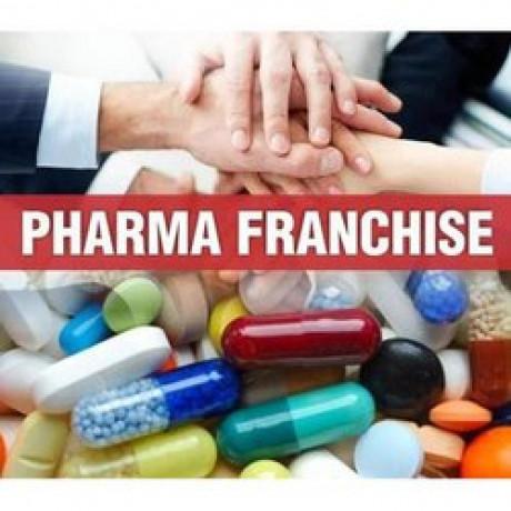 Gujarat Based Pharma Franchise Company 1