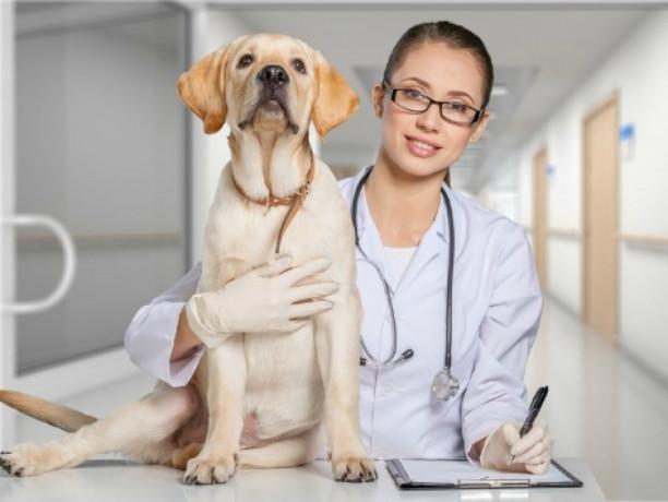 Veterinary Medicines Manufacturing Company 1