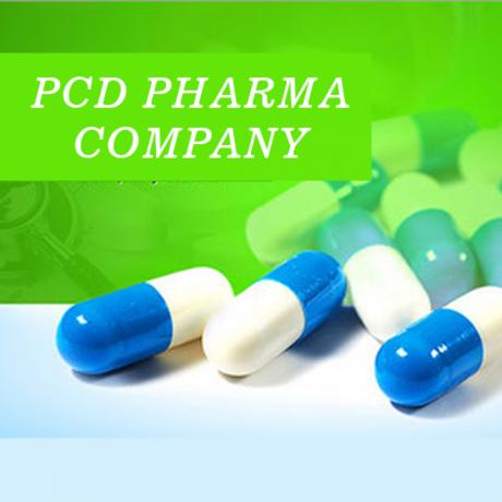 Baddi Based PCD Pharma Company 1