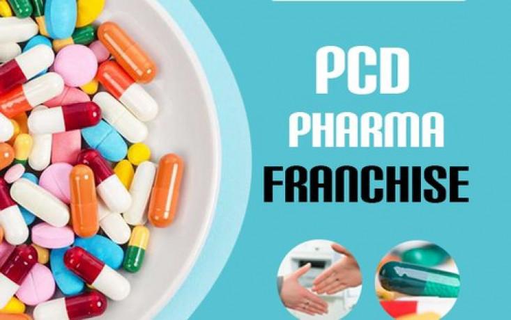 Best PCD Franchise Company 1