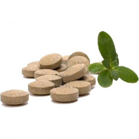 Ayurvedic Tablets Manufacturing Company 1