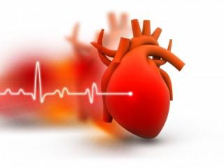 Cardiac Diabetic Products Franchise