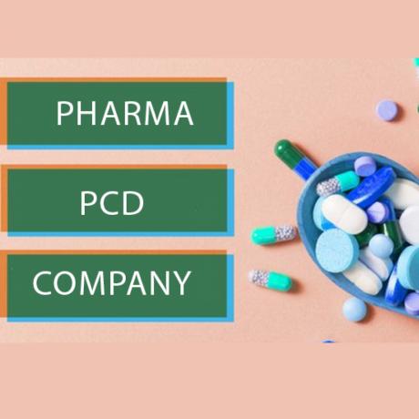 Best PCD Pharma Company 1