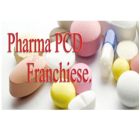 Punjab Based PCD Franchise Company 1