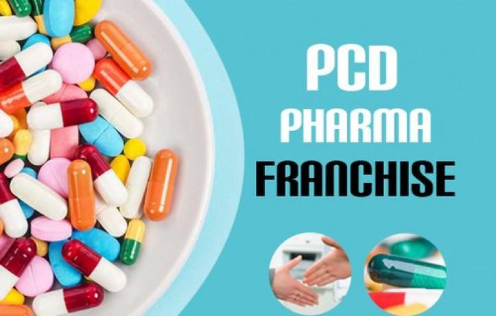 PCD Franchise Company in Baddi 1