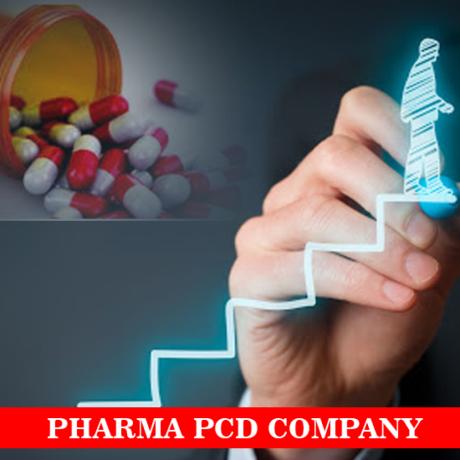 Chandigarh Based Pharma PCD Company 1