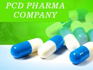 Gujarat Based PCD Pharma Company