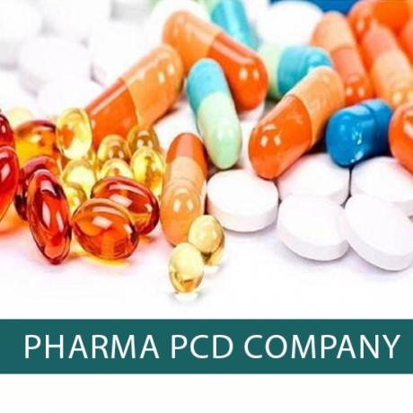 Top PCD Pharma Company 1