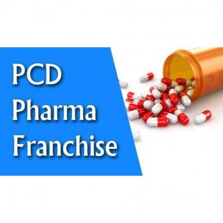 Delhi Based PCD Franchise Company 1