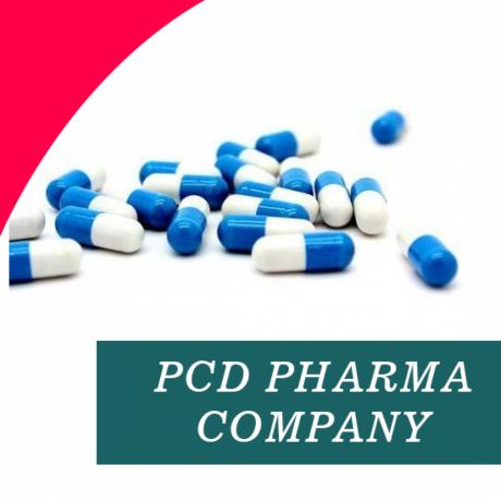 Chandigarh Based PCD Pharma Company 1