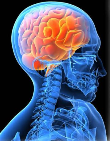 Neuropsychiatry Medicine Franchise in Haryana 1
