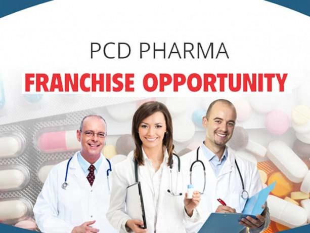 Panchkula Based PCD Pharma Franchise Company 1