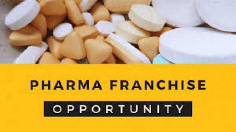 Pharma Franchise in Haryana 1