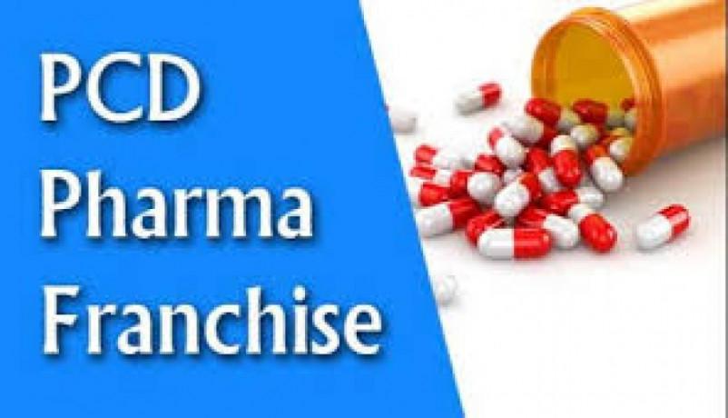Pharmaceuticals franchise for Karnataka 1
