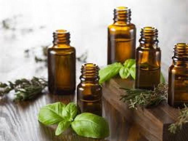 Ayurvedic Pain Oil Manufacturers 1