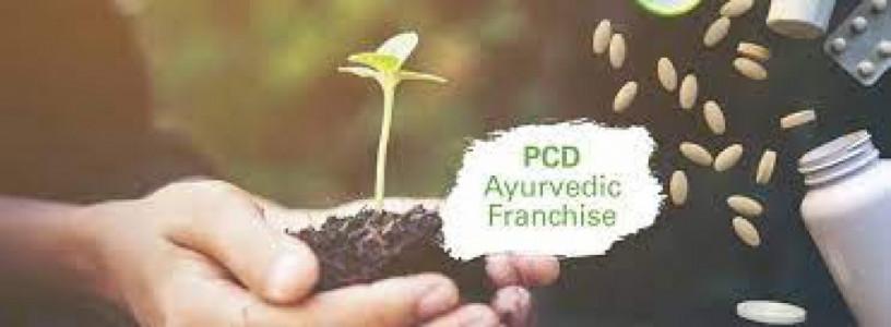 Ayurvedic franchise for himachal Pardesh 1