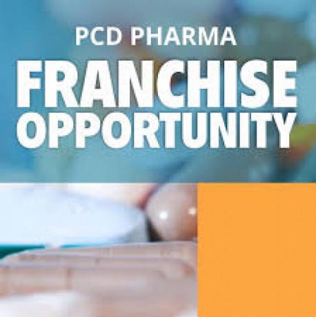 PG Based Pharma Company in Solan 1
