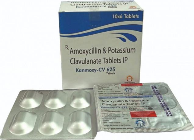 Amoxicillin and potassium clavulanate 1