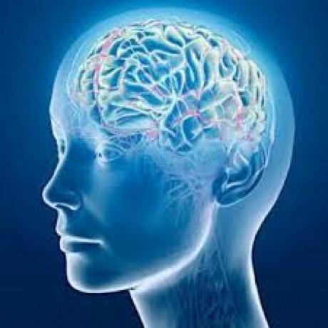 Neuropsychiatric Pharma Franchise 1