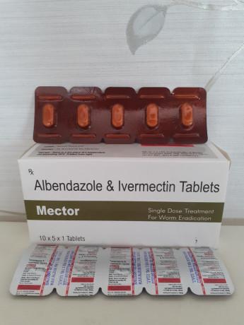 ALBENDAZOLE & IVERMECTIN TABLETS 1