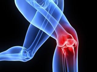 Orthopedics Product Franchise