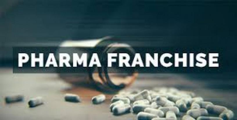 Pharma Franchise for Karnataka 1