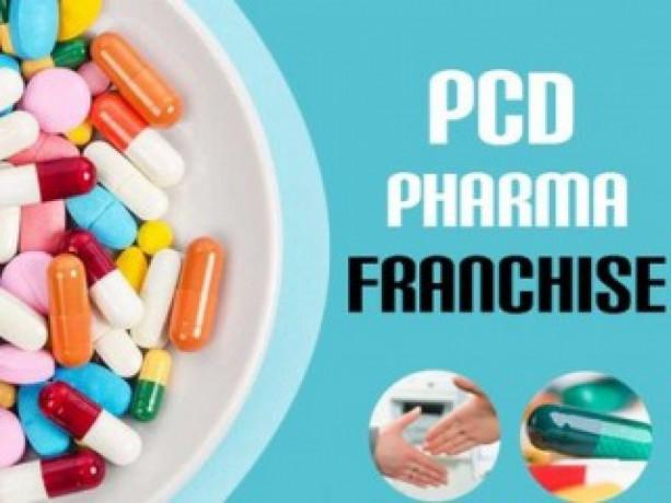 Pharma franchise for krishna andhra pradesh 1