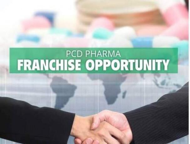 Pharma Distributors in Chandigarh 1