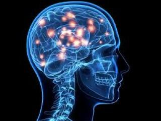 Neuropsychiatry Franchise