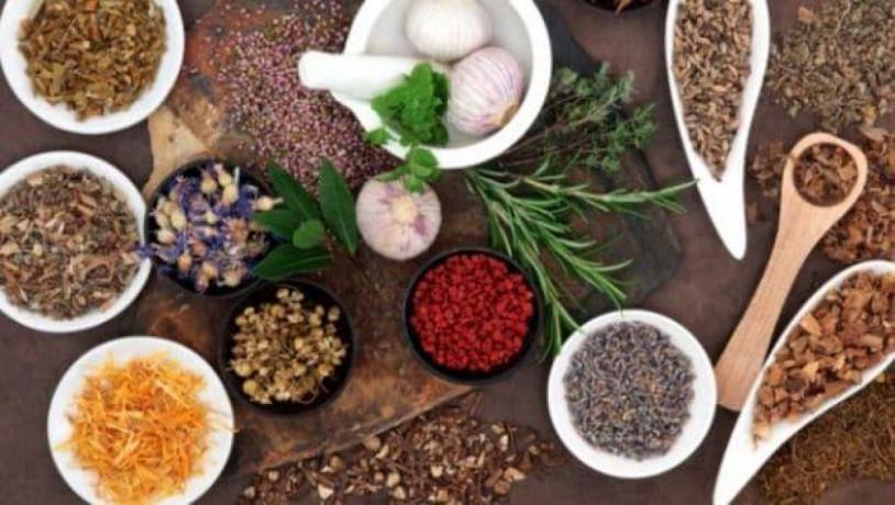 Franchise of Ayurvedic Medicine 1