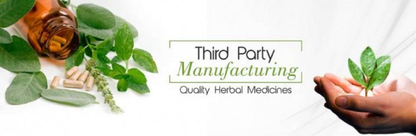 Ayurvedic Hair Oil Manufacturers 1