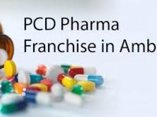 PCD PHARMA FRANCHISE FOR AMBALA