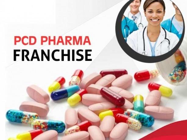 PG Based Pharma Franchise Company 1