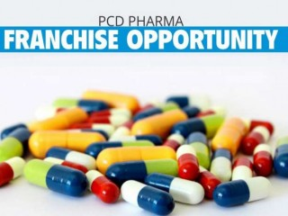 Pharma franchise in Lucknow