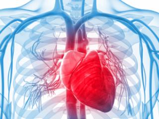 Cardiac Medicines