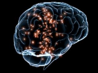 Pcd Neuro Psychiatric Division