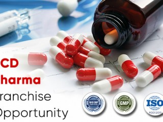 Pcd Pharma Franchise In Darjeeling with free visual aid , mr bag and other promotional material