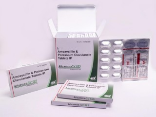 Amoxicillin and potassium clavulanate tablets ip 625 mg franchise available with free promotional support