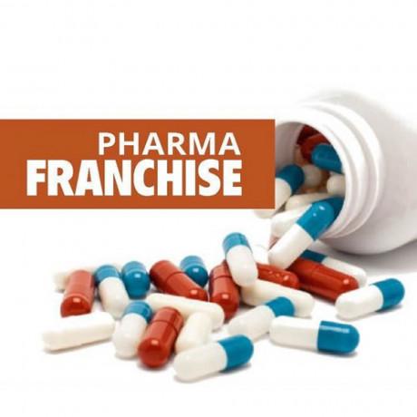 Pharma Franchise Company in India 1
