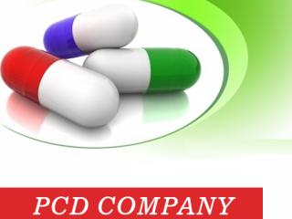 Pharma PCD Company in Punjab