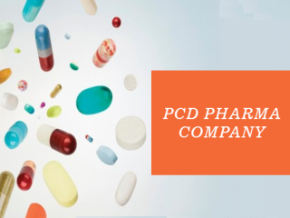 Pharma Distributors Company in Haryana