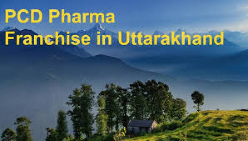 Pharma Business Opportunity In Uttarakand 1