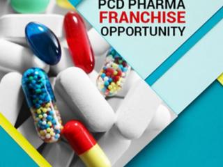 Medicine Franchise Company in Mohali