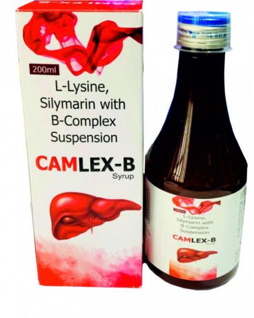 CAMLEX - B 1
