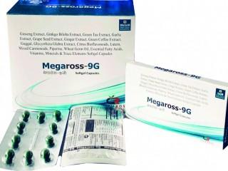 MEGAROSS-9G