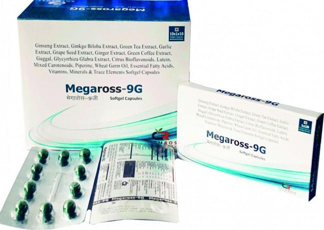 MEGAROSS-9G 1