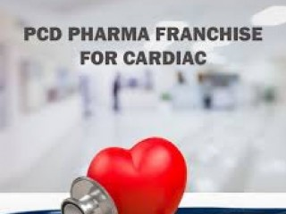 Cardiac Diabetic Pharma Franchise