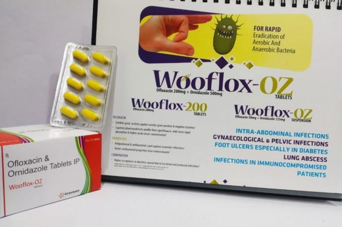 Ofloxacin 200mg Ornidazole 500mg 1