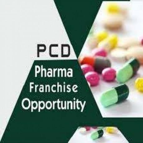 Pcd medicine franchise in Varanasi 1